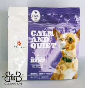 calm and quiet small dogs