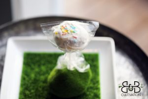 edible cakepop