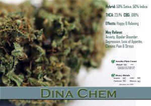 x Dina Chem 1128