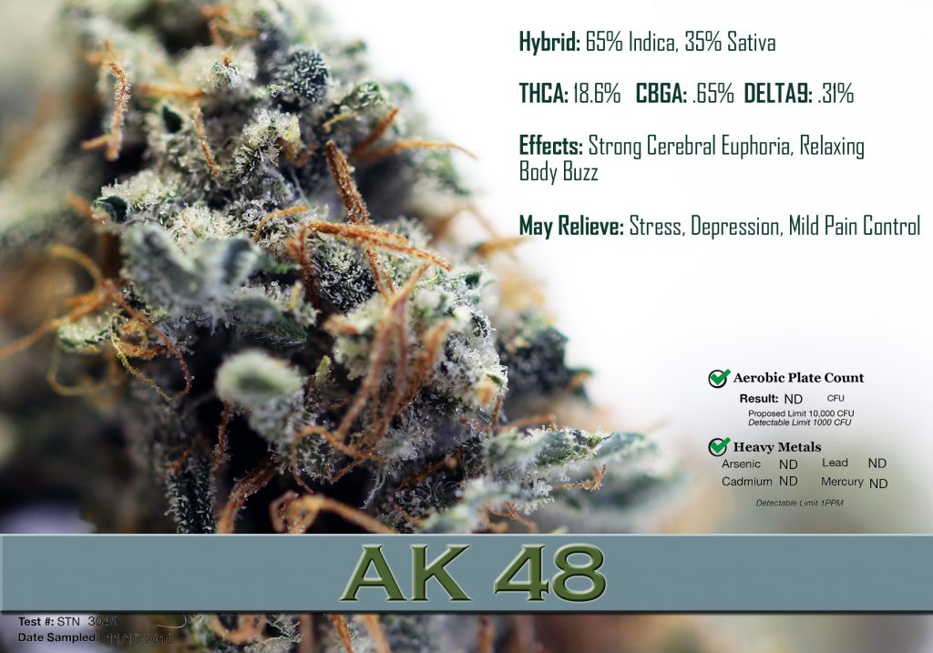 x ak48 data1128
