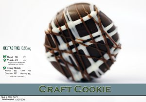 craft cookie data2(1)