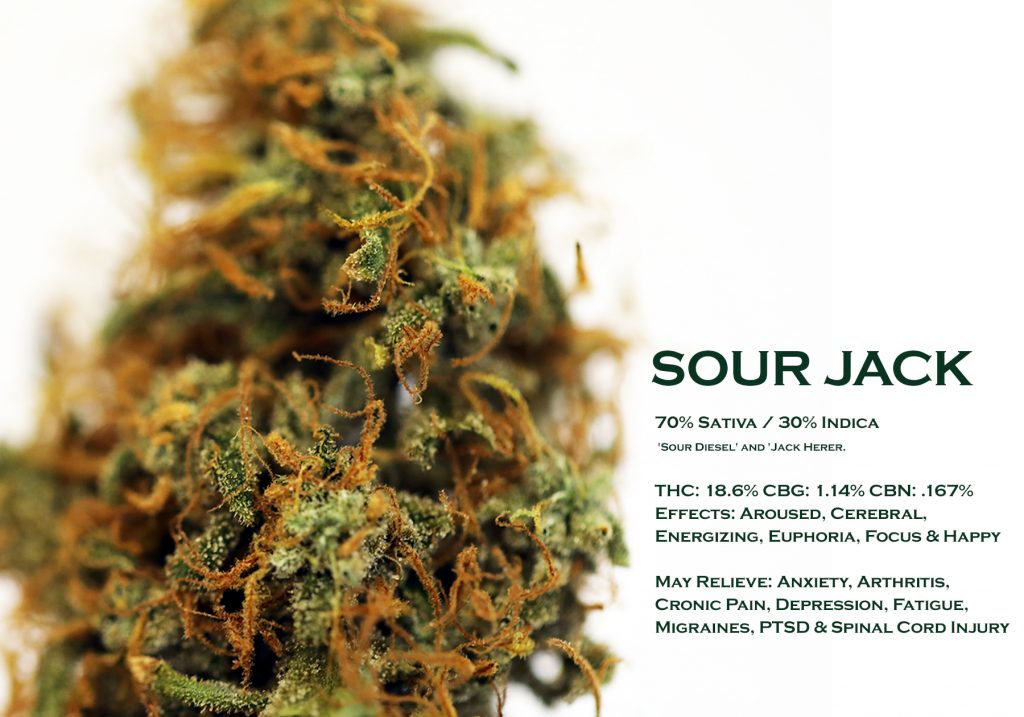 sour jack DATA CARD
